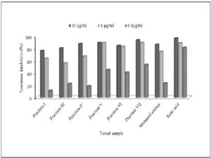Tyrosinase inhibitory (%) of different fractions isolated by liquid-liquid extraction in different concentration in comparison to kojic acid .