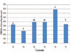 Effect fenugreek seeds in Malondialdehyde