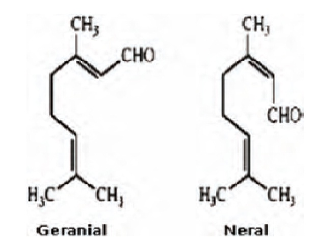 Citral isomers.