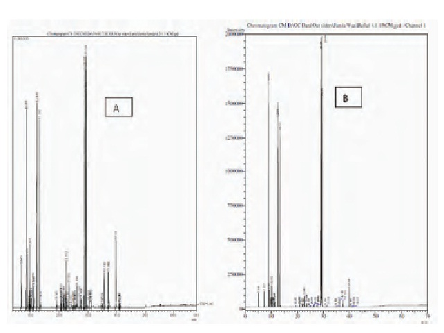 GC-MS (A) and GC (B) chromatogram of ether fraction of CD.
