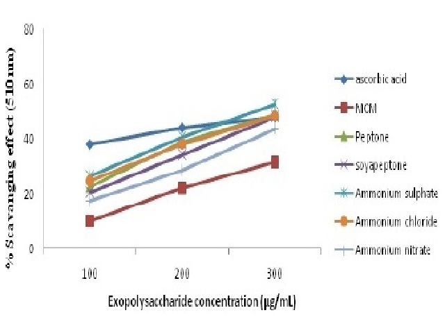 Scavenging effects of EPS from G. lucidum on Hydrogen peroxide extracted from medium contained Maltose