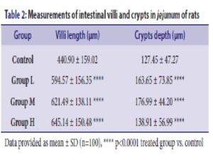 Measurements of intestinal villi and crypts in jejunum of rats
